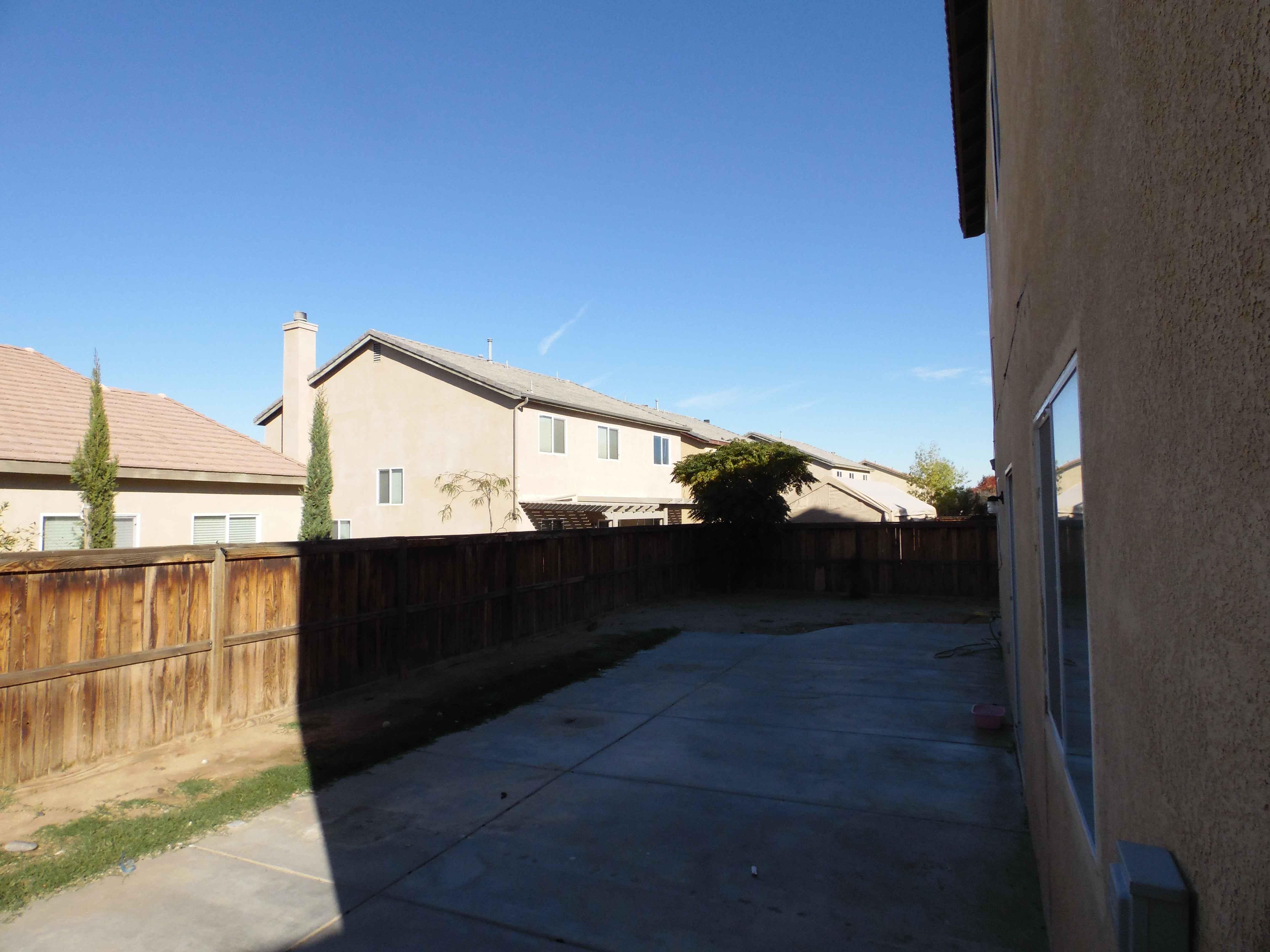backyard02.jpg